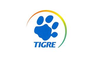 Cliente Tigre – Orloski Coaching